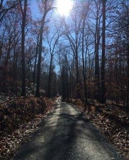 Mount Ephraim Road aka the evil road to nowhere