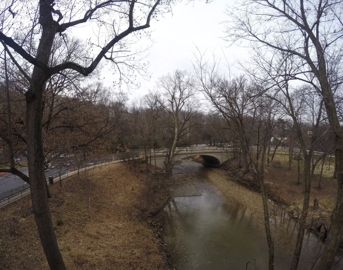 Early morning view of Rock Creek from inside the Zoo.